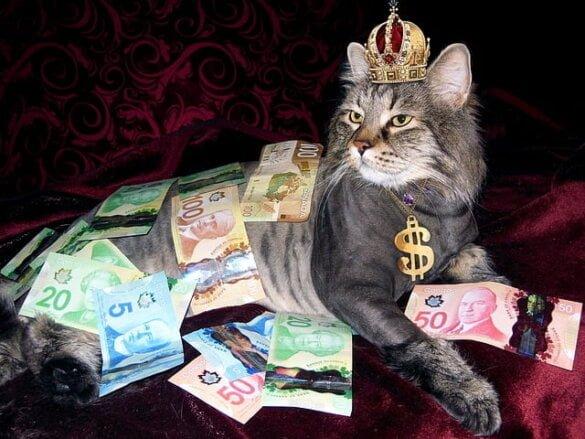 maakt geld gelukkig - lifestyle - zensitivity.nl
