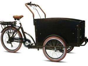 Troy E Bike Special Elektrische Bakfiets-elektrische fiets-op de fiets kinderen naar school brengen-bakfiets- bakfiets kopen-goedkope bakfietskopen