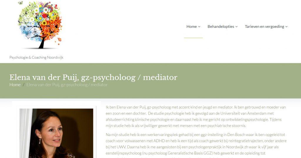 Website Porfolio Elena Van Der Puij