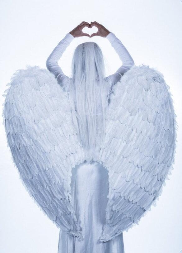 Wat Zijn Engelen En Bestaan Ze Echt